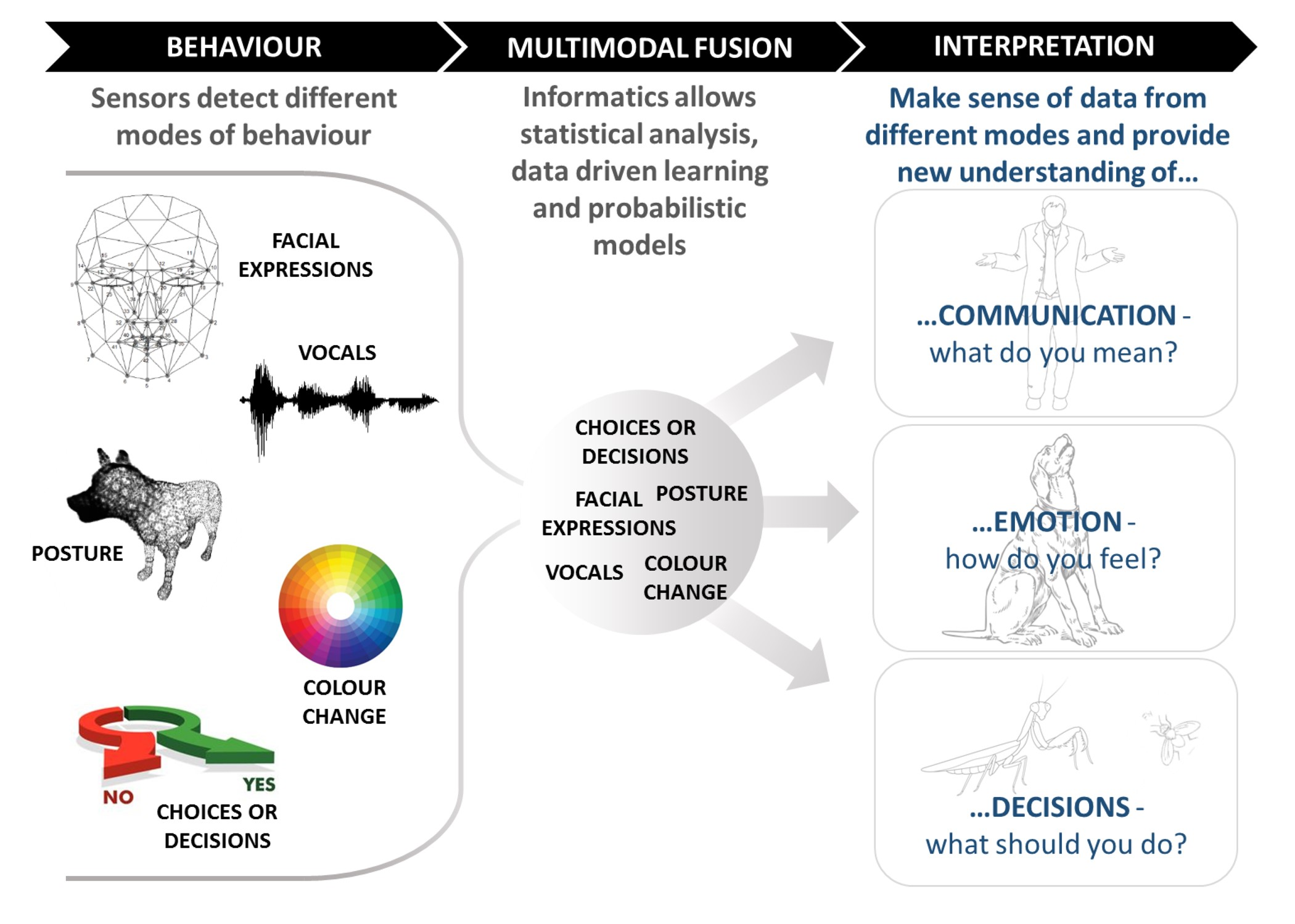 Infographic showing multimodal behaviour