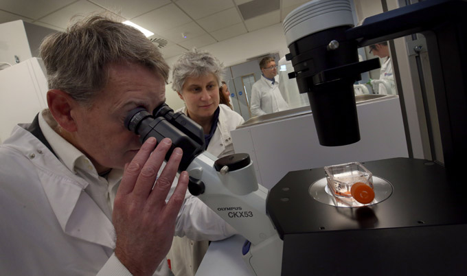 Mark Robson looking at cancer cells through a microscope