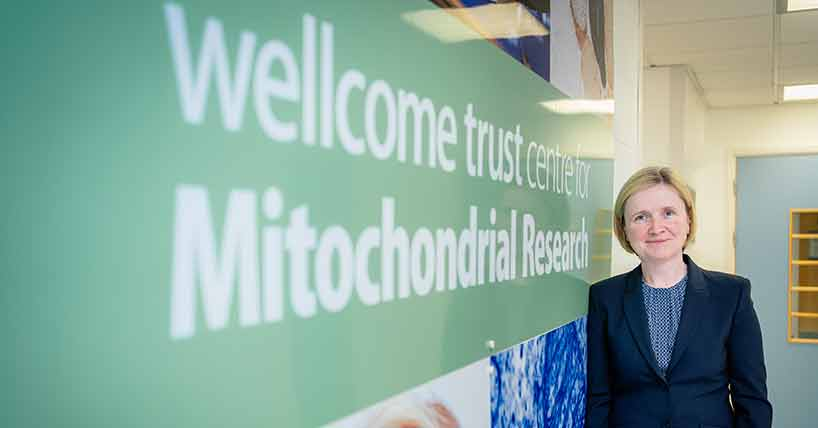 New Director of Newcastle's Wellcome Centre for Mitochondrial Research image