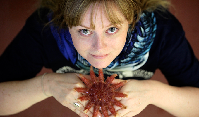 Dr Jacqui Pocklington with a common Sunstar starfish