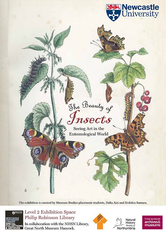 Insects illustration on a