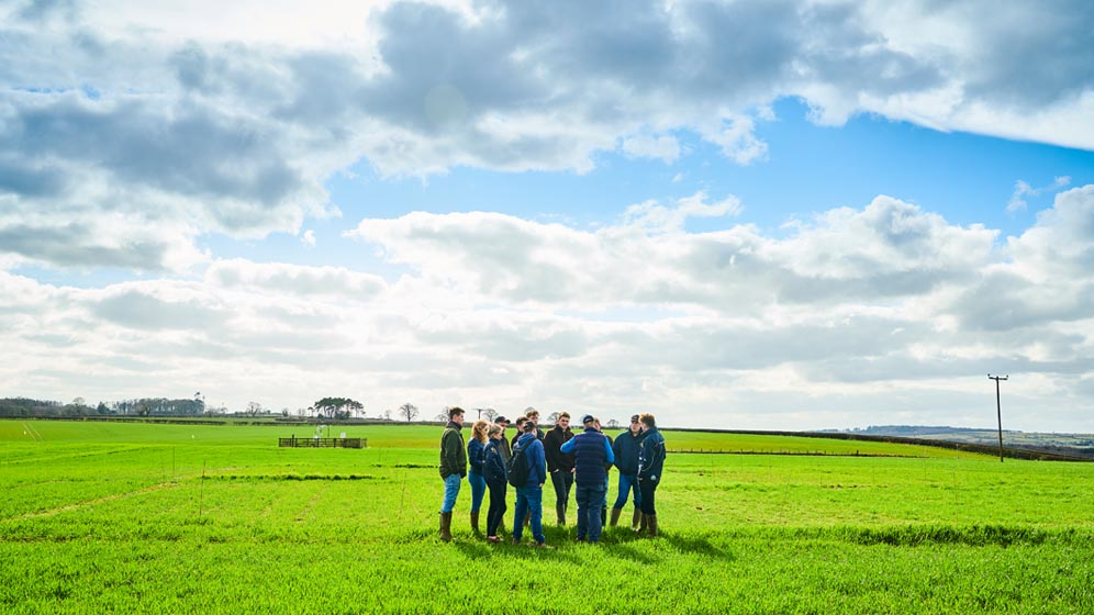 Students stand in a field at Cockle Park Farm