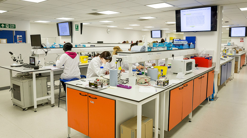 Biomedical and Biomolecular Sciences lab