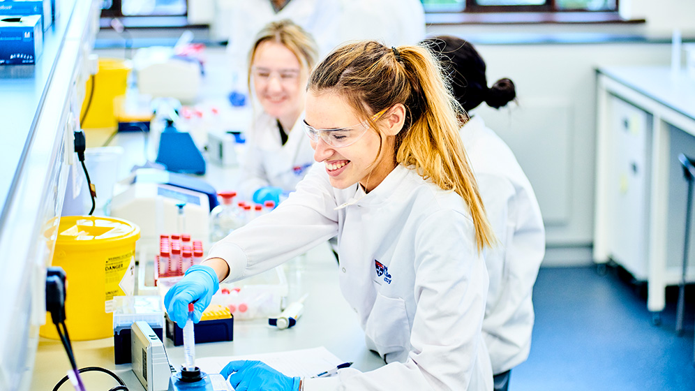 Pharmacy students working in a lab